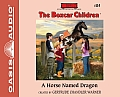 Boxcar Children #114: A Horse Named Dragon (Library Edition)