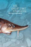 The Great Lake Sturgeon