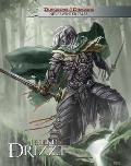 Dungeons & Dragons: The Legend of Drizzt - Neverwinter Tales (Dungeons & Dragons)