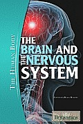 The Brain and the Nervous System (Human Body)