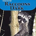 Raccoons in the Dark