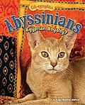 Abyssinians: Egyptian Royalty?