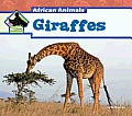 Giraffes (Big Buddy Books: African Animals) Cover