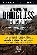 Walking the Bridgeless Canyon:...