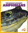 The World's Biggest Amphibians (World's Biggest Animals)