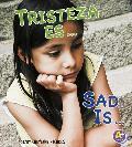 Tristeza Es.../Sad Is... (A+ Bilingue: Reconoce Tus Emociones/Know Your Emotions)