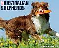 2015-Australian Shepherds
