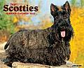 2015-Scotties