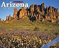 2015-Arizona