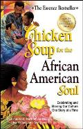 Chicken Soup for the African American Soul: Celebrating and Sharing Our Culture One Story at a Time (Chicken Soup for the Soul) Cover