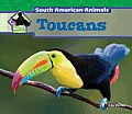 Toucans (Big Buddy Books: South American Animals)