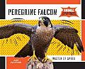 Peregrine Falcon:: Master of Speed (Animal Superpowers)