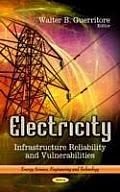 Electricity: Infrastructure Reliability & Vulnerabilities
