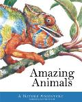 Amazing Animals (Peter David Scott) by Peter David Scott