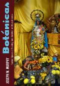Botanicas: Sacred Spaces of Healing and Devotion in Urban America