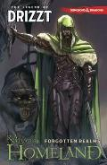 Dungeons & Dragons: The Legend Of Drizzt Volume 1 - Homeland by R. A. Salvatore