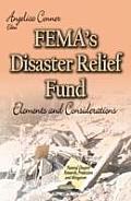 Femas Disaster Relief Fund: Elements and Considerations