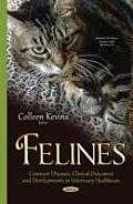 Felines: Common Diseases, Clinical Outcomes and Developments in Veterinary Healthcare