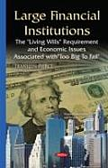 Large Financial Institutions: the