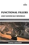 Functional Fillers and Nanoscale Minerals