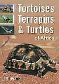 Tortoises, Terrapins & Turtles of Africa