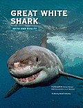 Great white shark; myth and reality