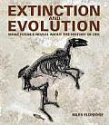 Extinction & Evolution What Fossils Reveal about the History of Life