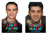 Zayn Malik/Liam Payne: The Biography