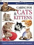 Wonders of Learning - Caring for Cats and Kittens: Reference Omnibus