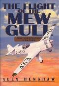 The Flight of the Mew Gull