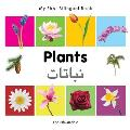 My First Bilingual Book-Plants (English-Arabic) (My First Bilingual Book)