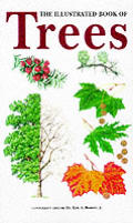 Illustrated Book of Trees a Visual Guide To Mo Cover