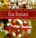Fuchsias a Practical Step By Step Guide