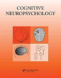 Inhibitory After-Effects in Spatial Processing: Experimental and Theoretical Issues on Inhibition of Return: A Special Issue of Cognitive Neuropsychol