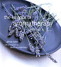 Essence Of Aromatherapy