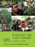 Restauration Des Forets Tropicales: Un Guide Pratique