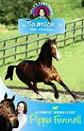 Samson: the Stallion