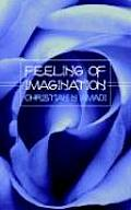 Feeling of Imagination