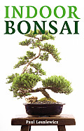 Indoor Bonsai