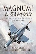 Magnum!: The Wild Weasels in Desert Storm