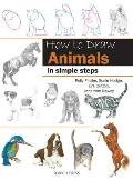 How to Draw Animals: In Simple Steps