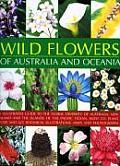 Wild Flowers & Flora Of Australasia