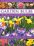 The Complete Practical Handbook of Garden Bulbs: How to Create a Spectacular Flowering Garden Throughout the Year in Lawns, Beds, Borders, Boxes, Cont