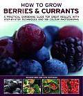 How to Grow Berries & Currants: A Practical Gardening Guide to Growing Strawberries, Blueberries and Other Soft Fruits, with Step-By-Step Techniques a