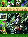 Best Plants to Attract & Keep Wildlife in Your Garden