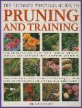 Ultimate Practical Guide to Pruning and Training
