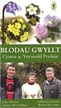 Blodau Gwyllt: Cymru Ac Ynysoedd Prydain