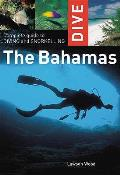 Complete Guide To Diving and Snorkelling the Bahamas
