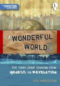 A Wonderful World: Five Youth Group Sessions from Genesis to Revelation