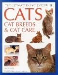The Ultimate Encyclopedia of Cats, Cat Breeds & Cat Care:: The Definitive Cat Encyclopedia - A Comprehensive Visual Guide to All the Main Recognized C